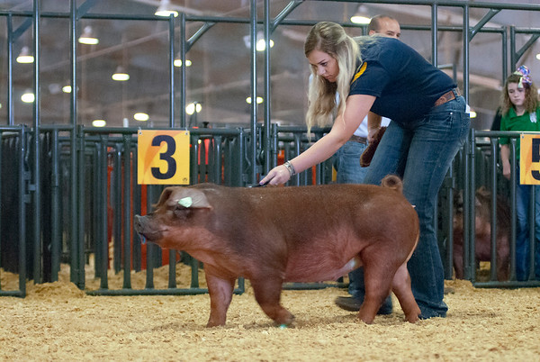 Tulsa Gilt Show Day 1