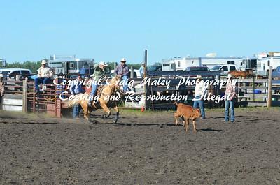 07-03-14 Perf Calf Roping