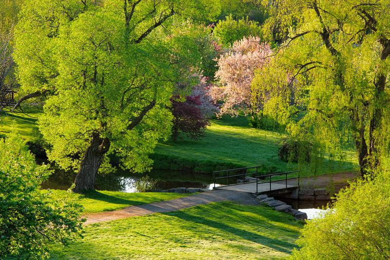 Arboretum_may 12-2012_01.jpg