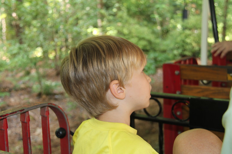 on the train at the Museum of Life & Science