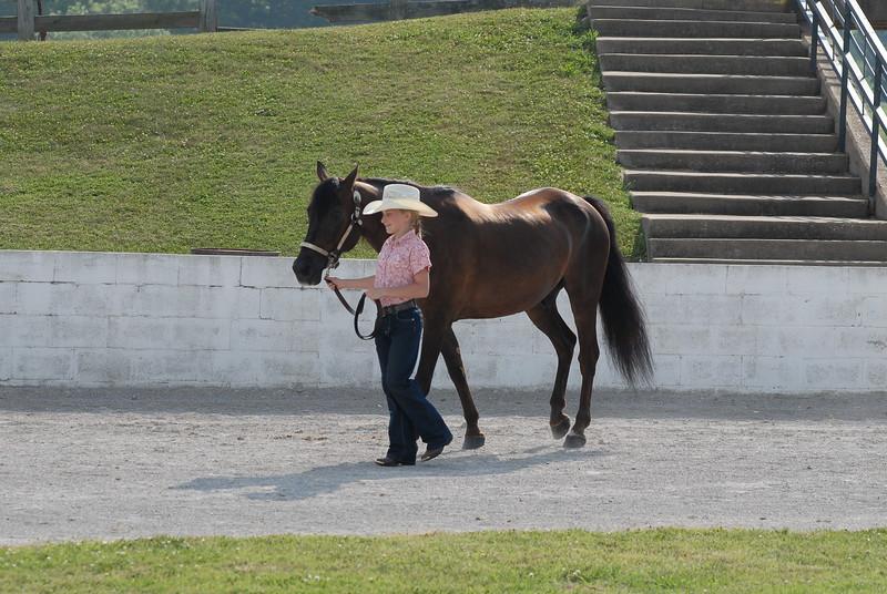 Bridle & Saddle Club - 2010