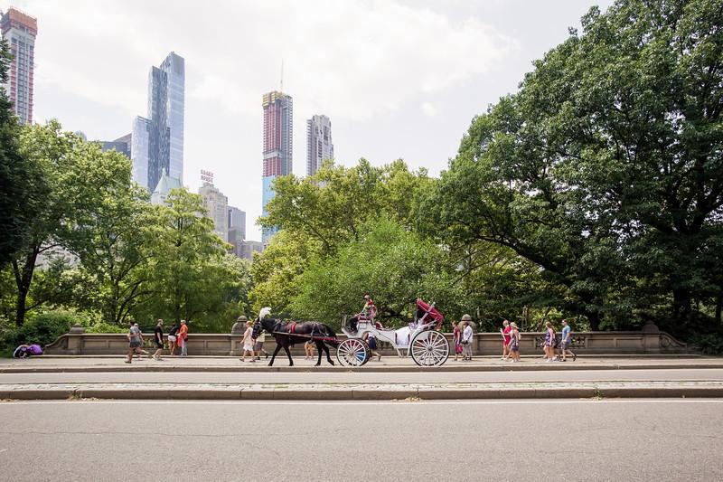 Central Park Wedding - Ronica & Hannah-37.jpg