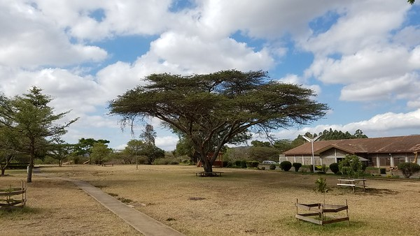 Wolff 2018 Kenya