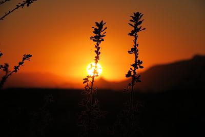 Scottsdale-Sunset-12FEB2016