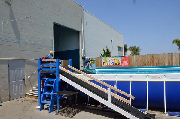 Pool - 29 April 2012