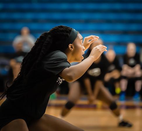 Volleyball, 2015, 08-07-15, NCHS, Denton, Varsity,-9