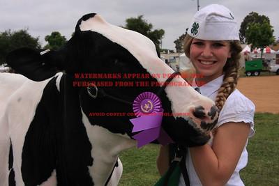 2011 LHVCF Dairy