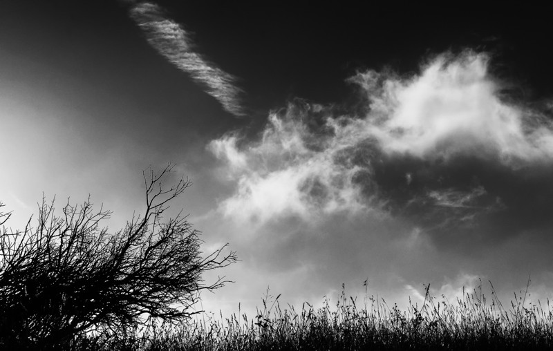 Spontaneous Adventure clouds.jpg