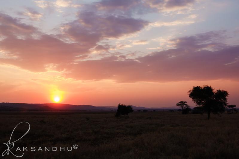 SunInAfrica-029.jpg
