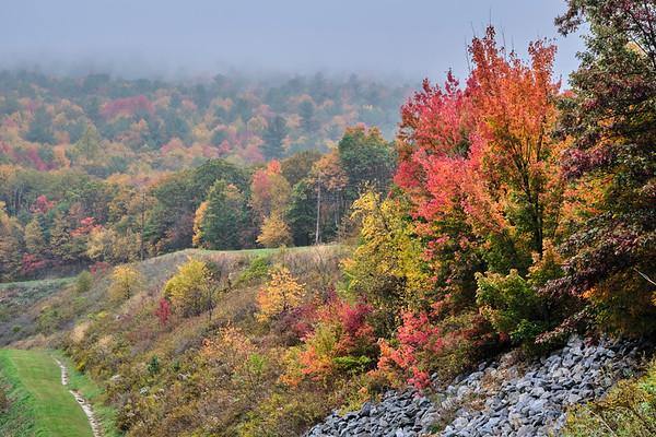 Fall Colors, 10-22-20 (X-T4)
