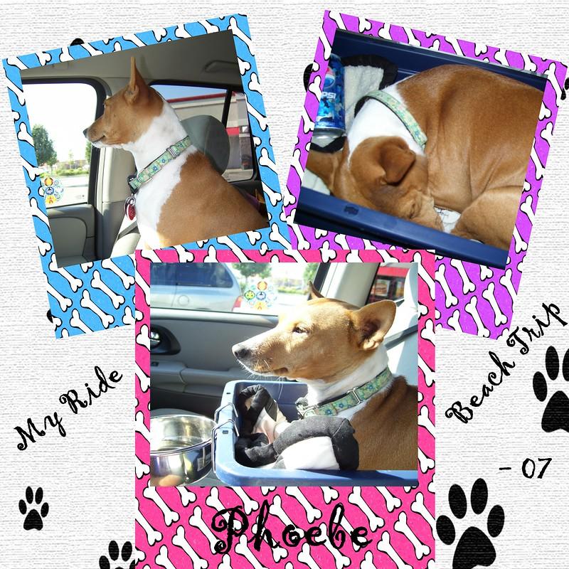 My-Ride-Phoebe-000-Page-1.jpg