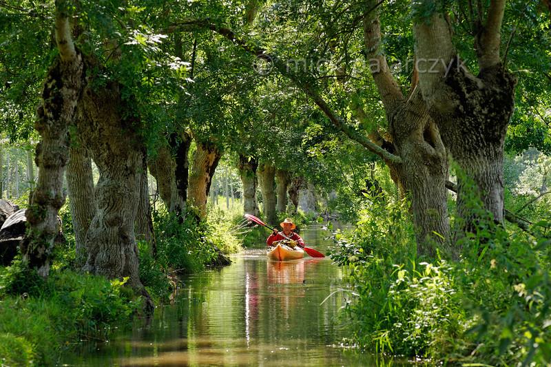 Marais Poitevin: kayakers paradise.
