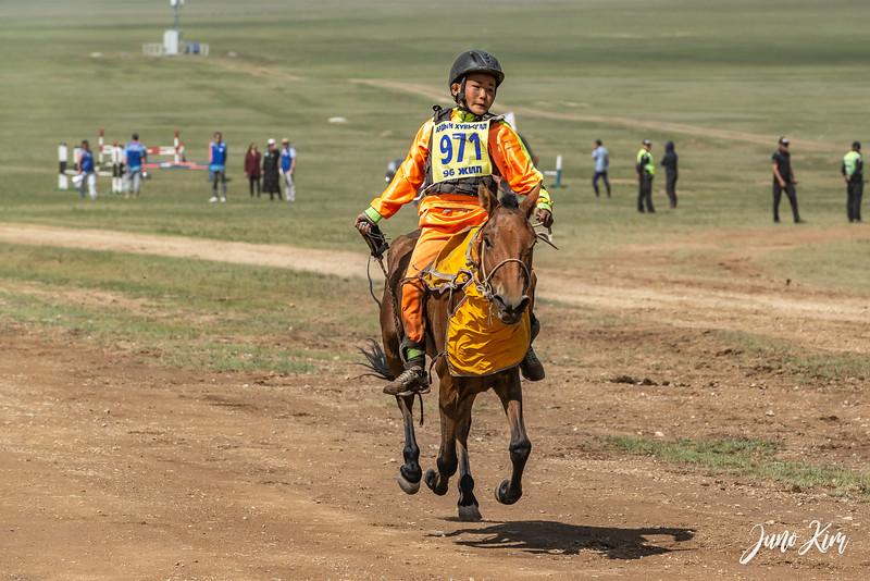 Horse racing__6109113-Juno Kim.jpg