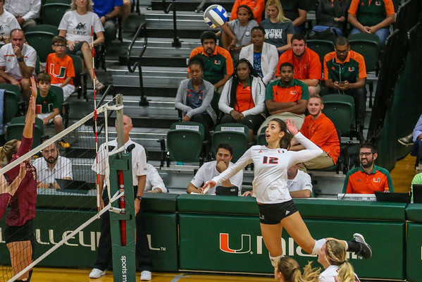 UM vs. FSU Volleyball