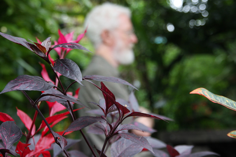 garden (147).jpg