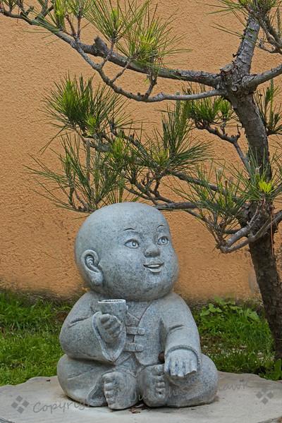 Sitting Under the Pine