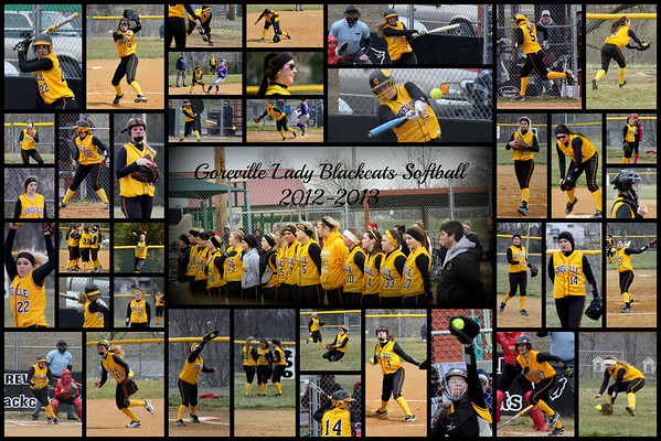 2013 Goreville Lady Blackcats Softball