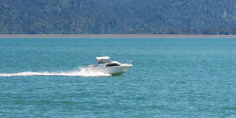 AlaskaSummer2018-1350.jpg