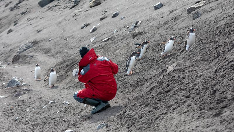 2019_01_Antarktis_01371.jpg