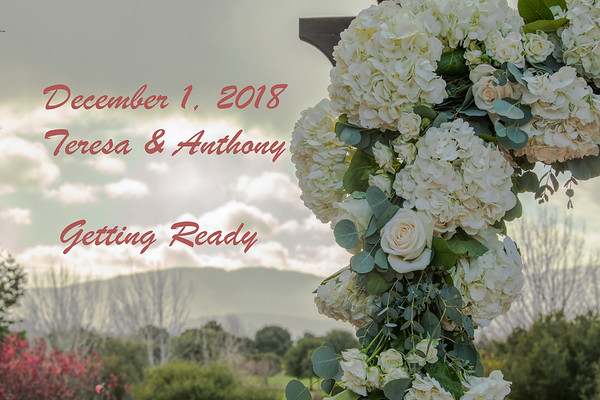 Wedding of Teresa & Anthony