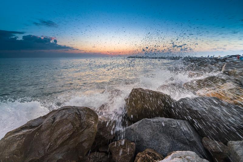 Venice-FL-jad-56.jpg