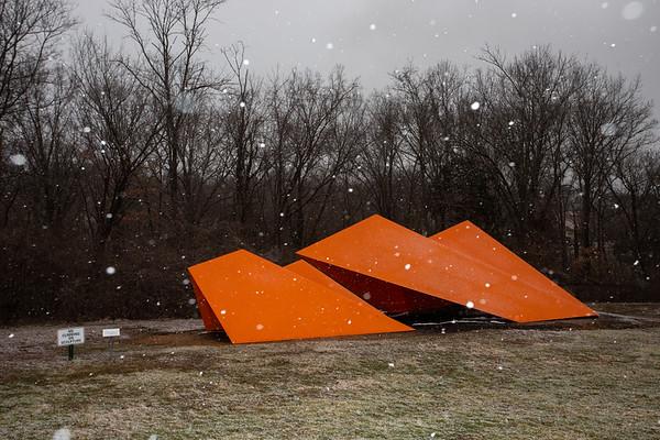 Laumeier Snow with Flash Jan. 2020