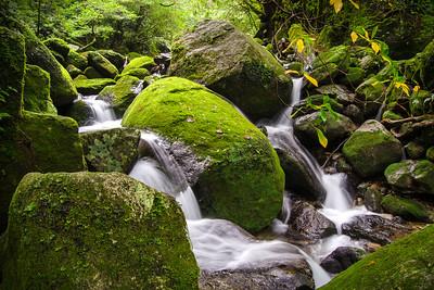 Waterfalls of Shiratani Unsuikyo - Yakushima, Japan