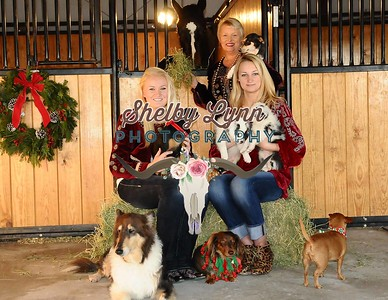 Amy Bertelsen Christmas Photos