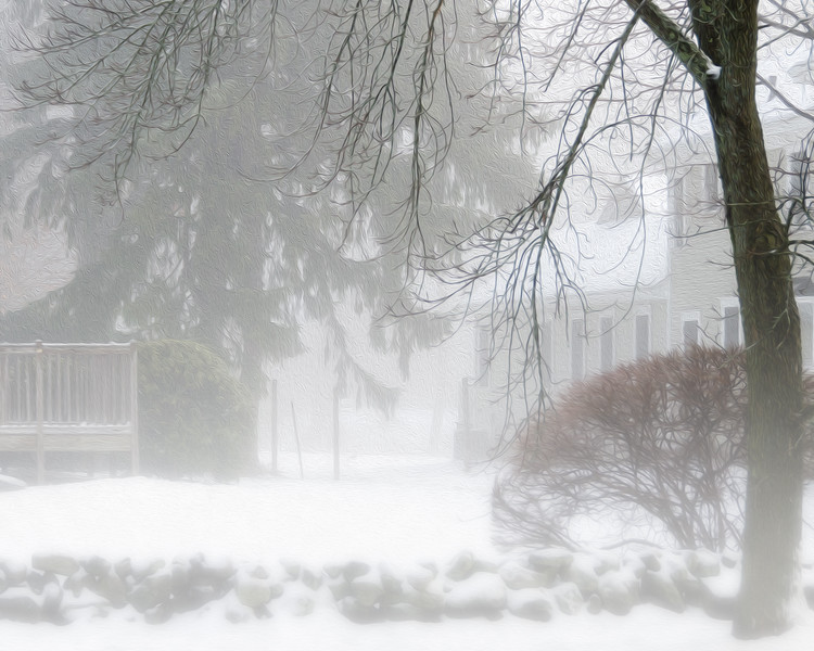 Snow fog II