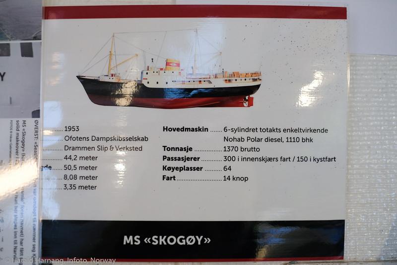 Skogøy, 2. sept 2021