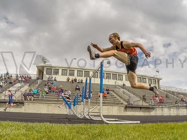 100/110m hurdles