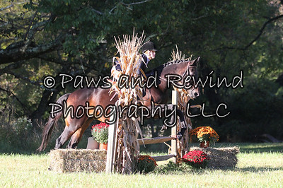 Amwell Valley Hounds Hunter Trials September 28, 2013