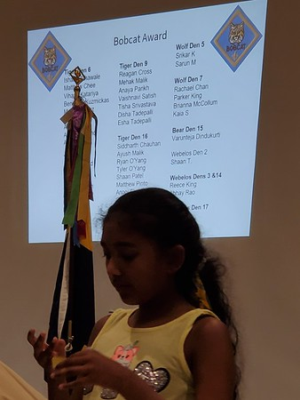 Cub Scouts 2019-2020