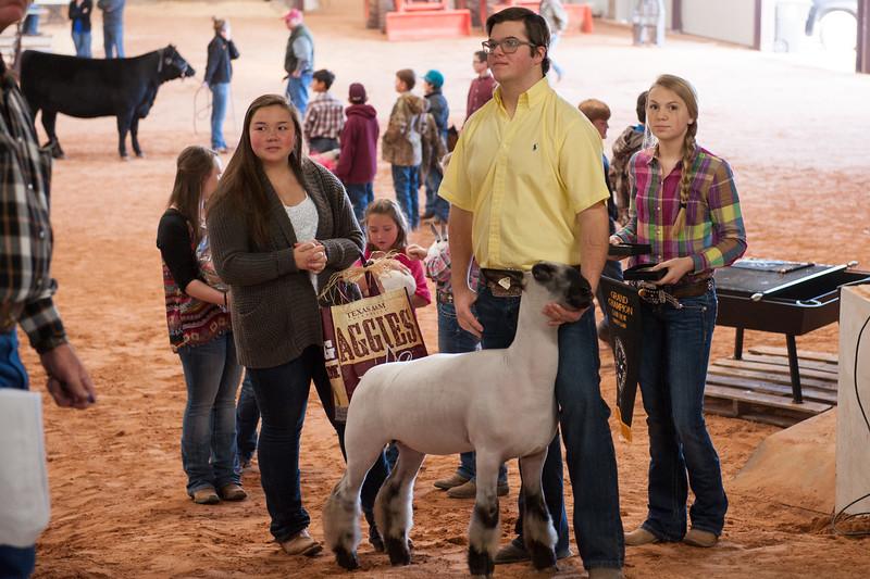 Hays County Show-9794.jpg