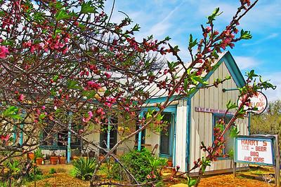 Texas-Willow City