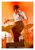 The_Last_Shadow_Puppets_Lowlands_2016_05