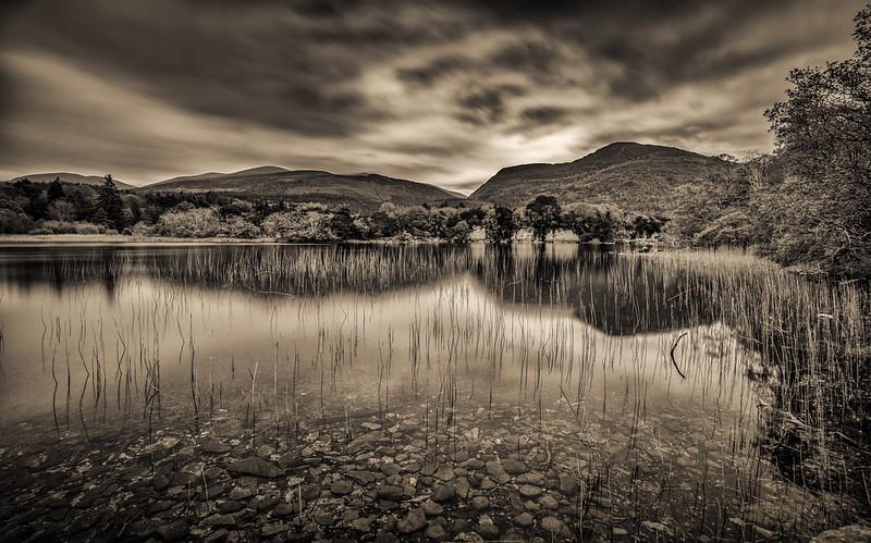 Lake at Muckross House, Killarney.