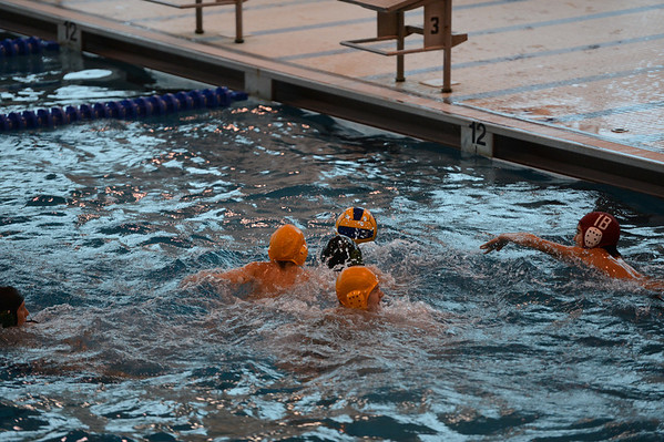 2012 Loyola Water Polo 11-1-2012