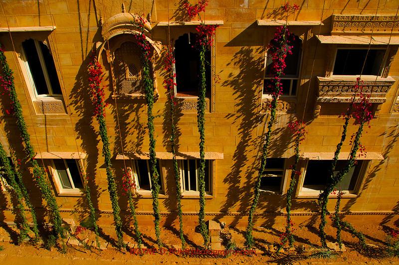 India2010-0209A-185A.jpg