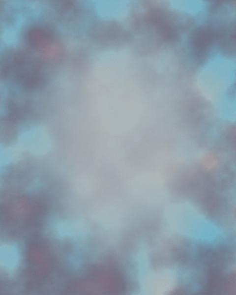 Muttled Blue.jpg