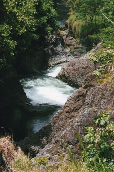 199806-hawaii-11250.jpg