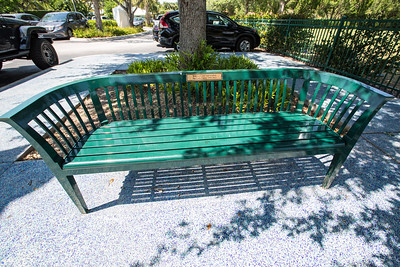 Bench and Trees Honoring Loved Ones