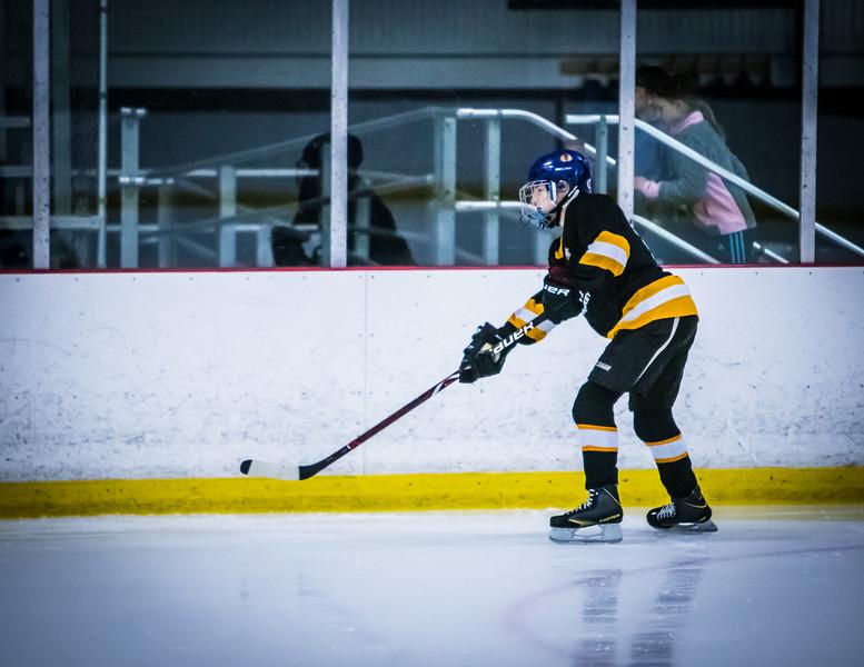 Bruins2-70.jpg