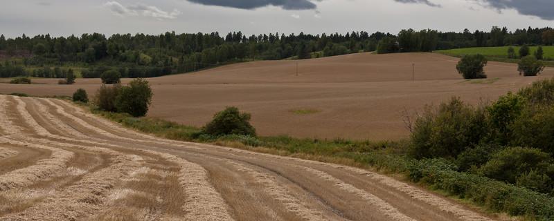 Høst2010-130