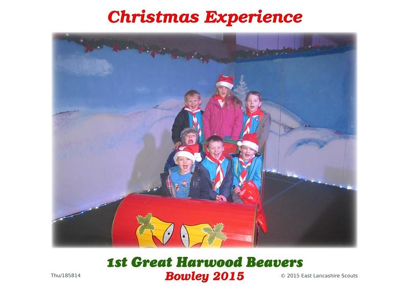 185814_1st_Great_Harwood_Beavers.jpg