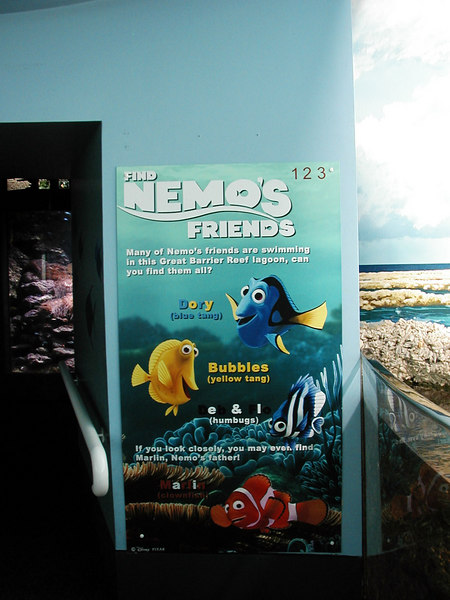 46.  Sydney Aquarium.JPG