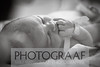 Birth Photography : 1 gallery with 59 photos