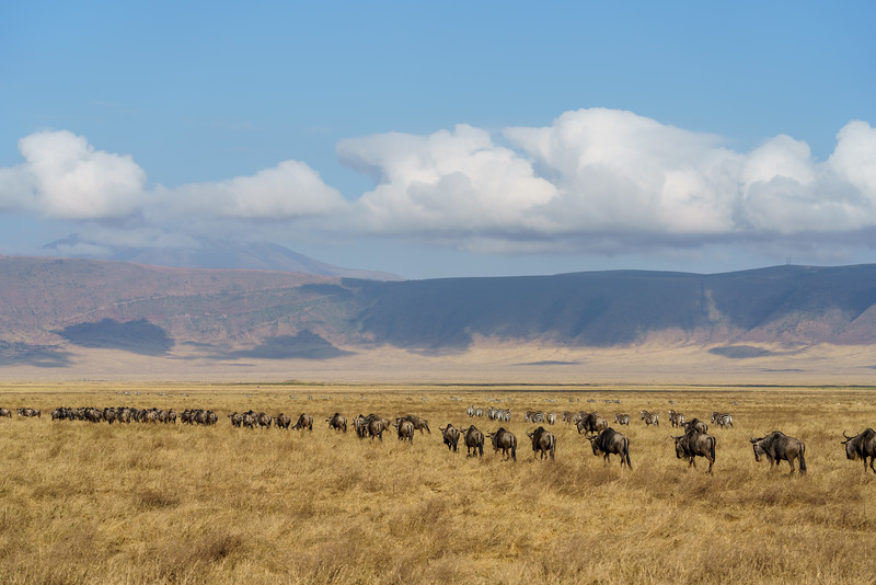NgorongoroCrater-20181004-1542.jpg