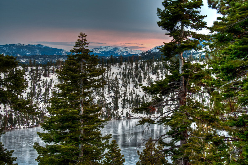 frozen-lake-trees.jpg