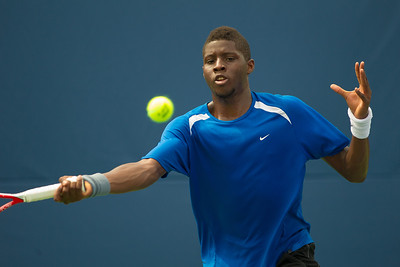 Citi Open Tennis (2013)